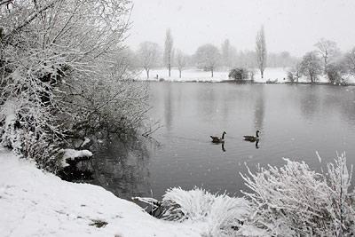 Danson Park Snow
