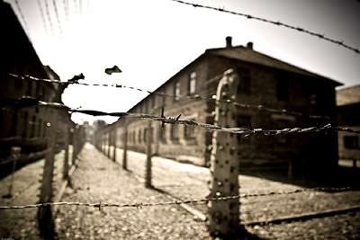 Auschwitz Security Barbed Wire Fence