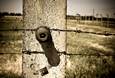 Barbed Wire Fence Auschwitz Birkenau
