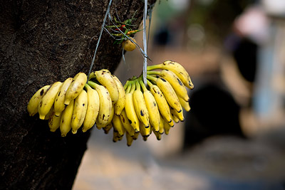 Bananas Mumbai