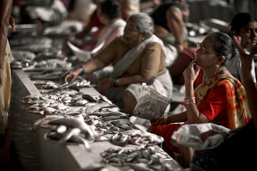 Warren williams new zealand photo blog panjim fish market for Williams fish market