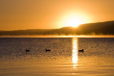 Lake Rotorua Sunrise