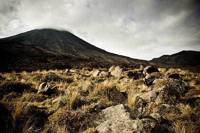 Mt Doom and tussock grass