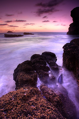 Maori Bay Muriwai amazing sunset